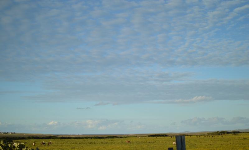 Clouds lewis