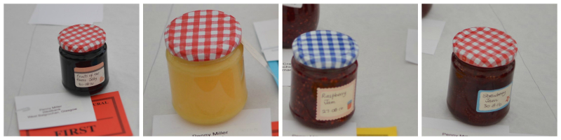Preserves collage 2016